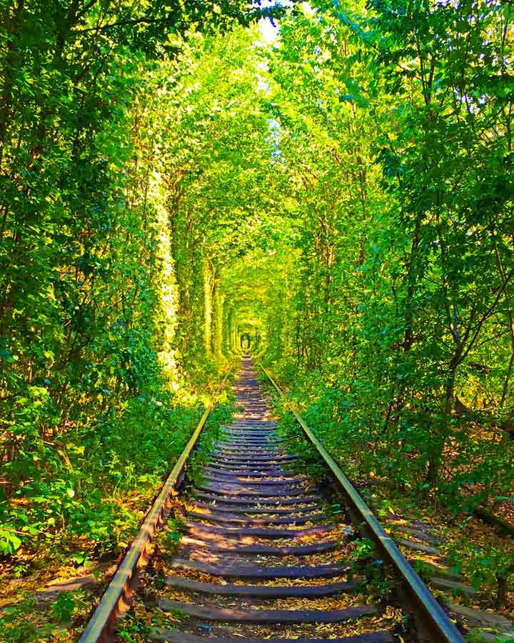 Ukraine TUNNEL in forest cheap travel country