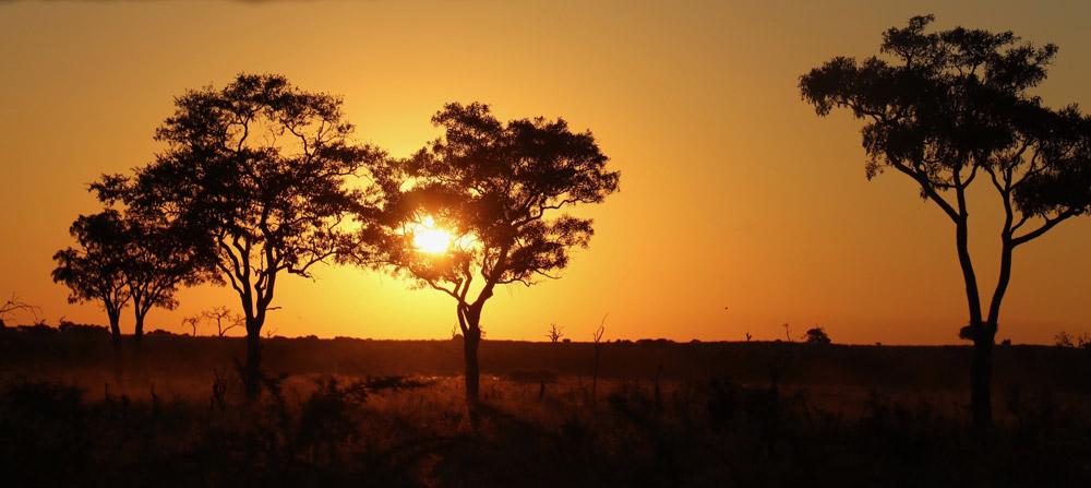 Maitisong Festival in Botswana, African Celebrations