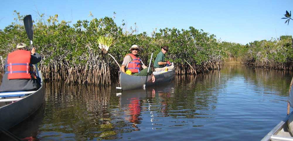 kayaking in the Everglades National Park Florida getaways with kids