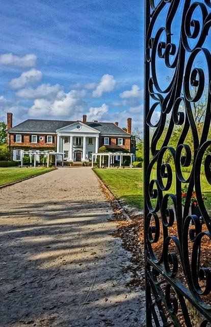 Charleston plantations USA bucket list