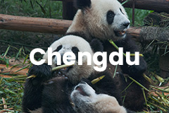 Chengdu Travel Guide