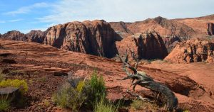 Visit St George Utah