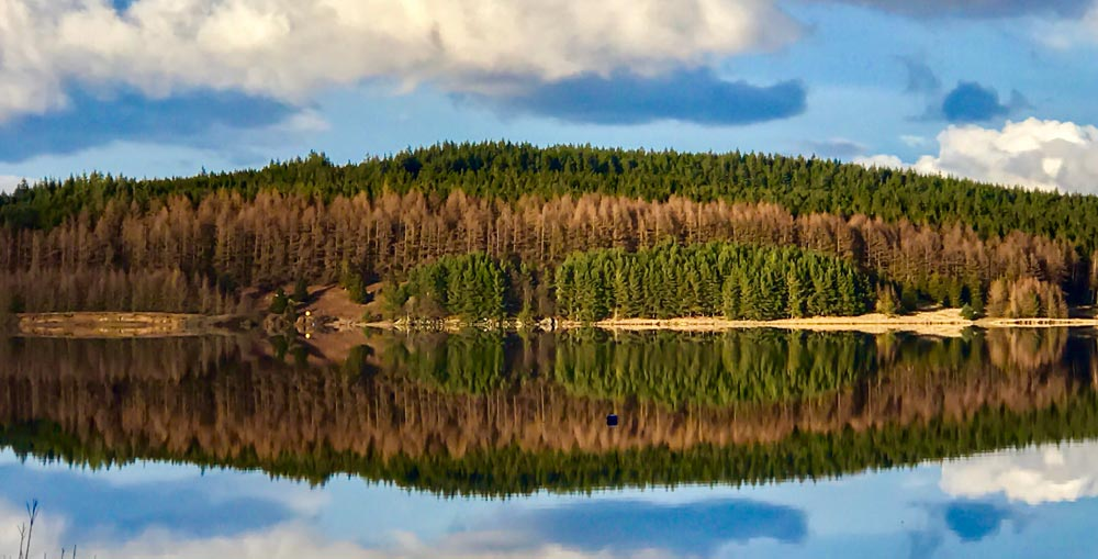 Kielder water in Northumberland Family Hiking in the uk