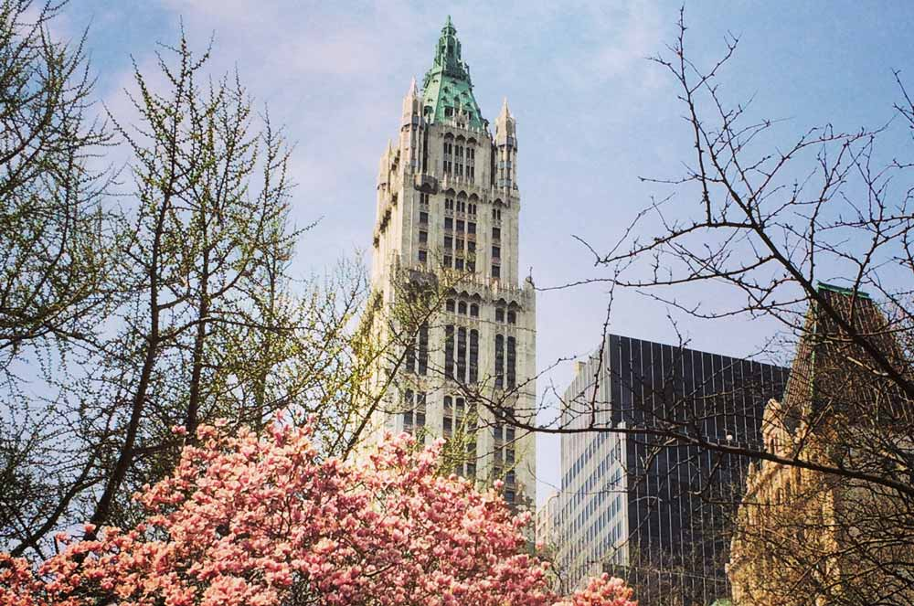 Woolworth Building famous skyscrapers in New York City