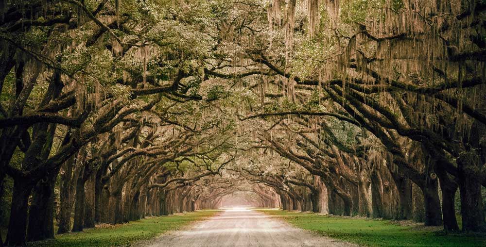 Savannah Romantic places in the usa