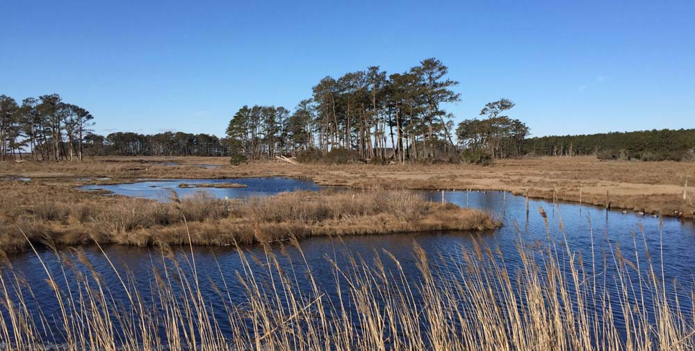 Chincoteague Island Virginia Romantic places in the usa