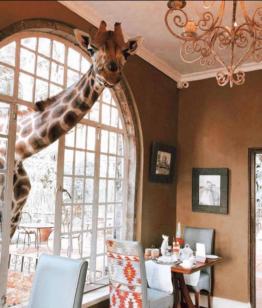 Giraffe Manor, Kenya unique luxury hotels
