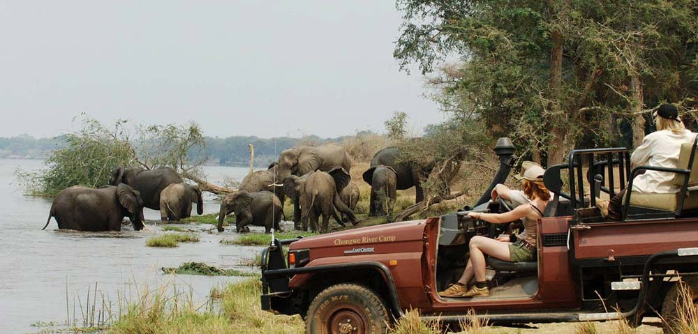 Safari in Kafue National Park