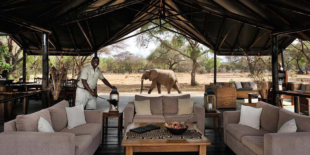 Best safaris in Zambia