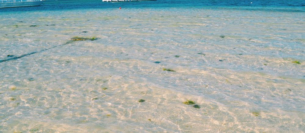 Cana Beach in Vietnam Beach best beaches in Vietnam