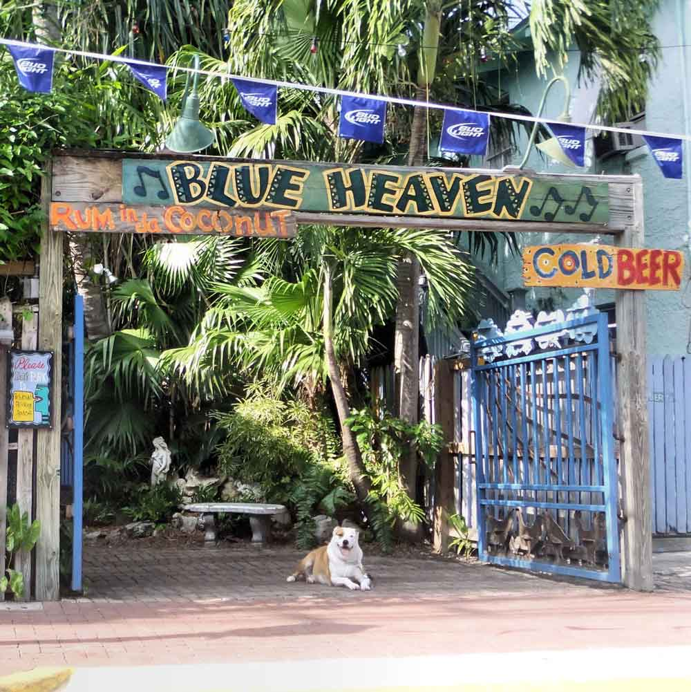 Blue Heaven restaurant and bar in key west