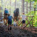 Family travel hiking through the forest