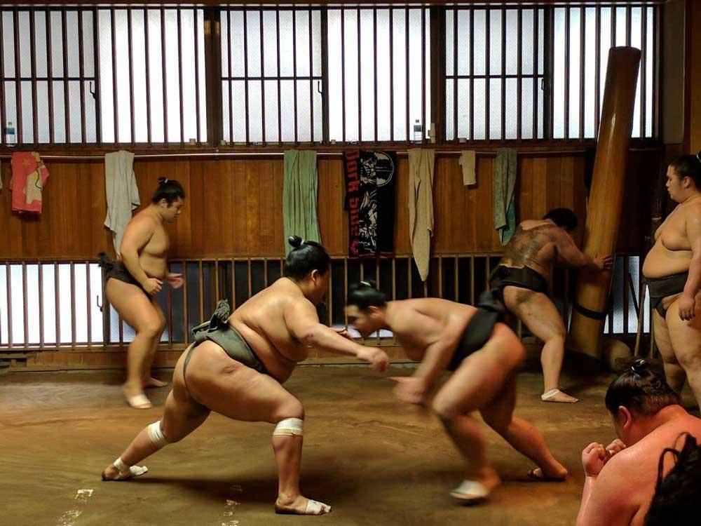 Sumo wresting practise in Tokyo Japan